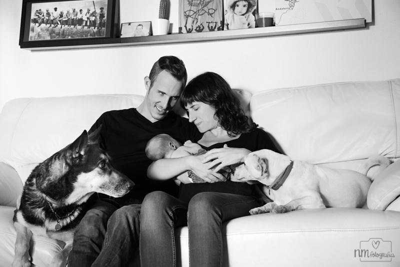 Sesion-fotos-newborn-con-perros