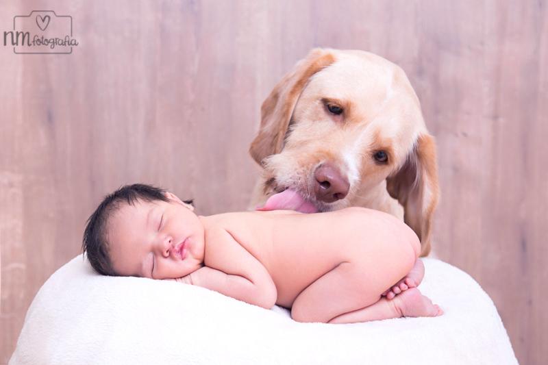 fotografía de recién nacida con perro