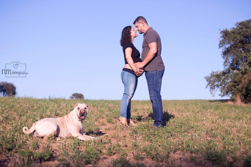 sesión de fotos de embarazo con perro