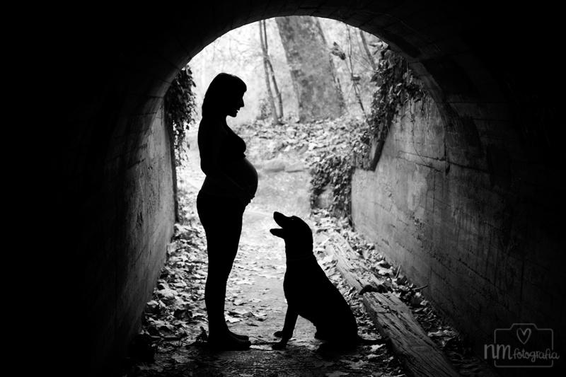 52-foto-embarazo-siueta-perro