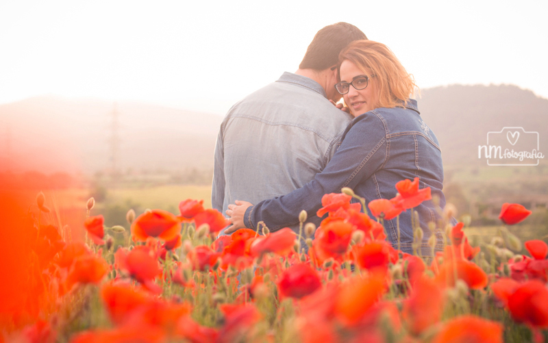 fotos de pareja en campo de ampolas